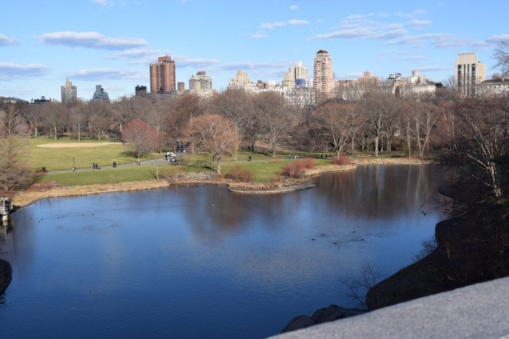 Una giornata a central park